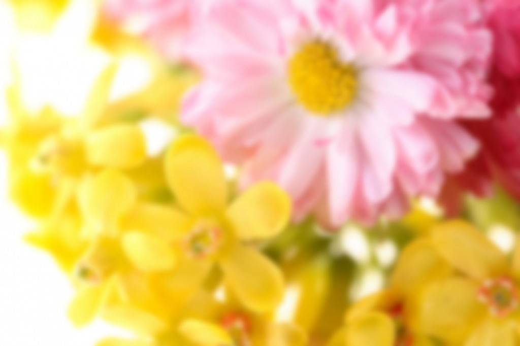cropped-0004163787P-1920x1280.jpg